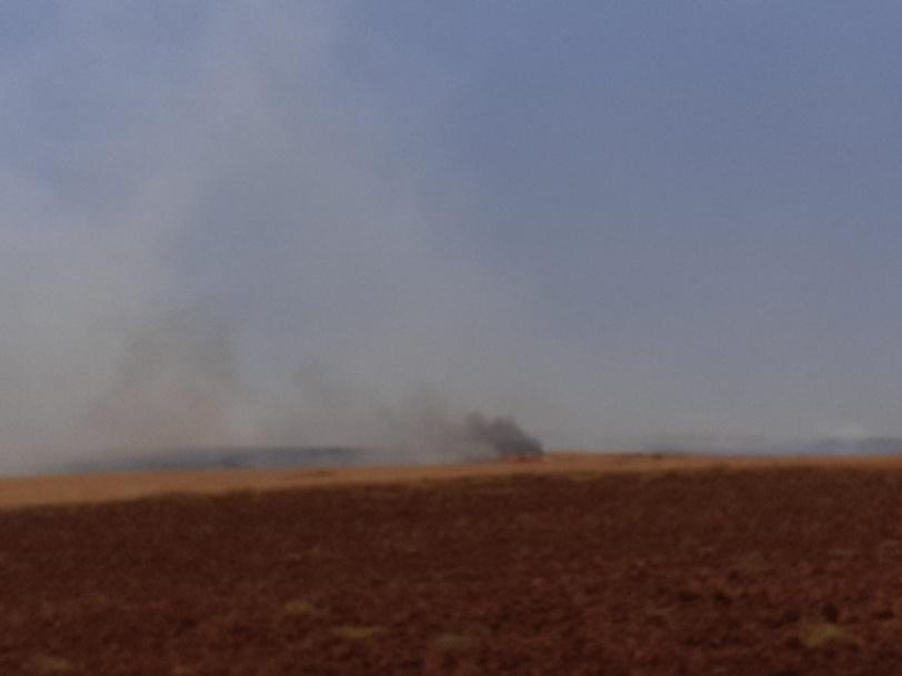 الاحتلال يتسبب باحتراق آلاف الدونمات الزراعية في الأغوار