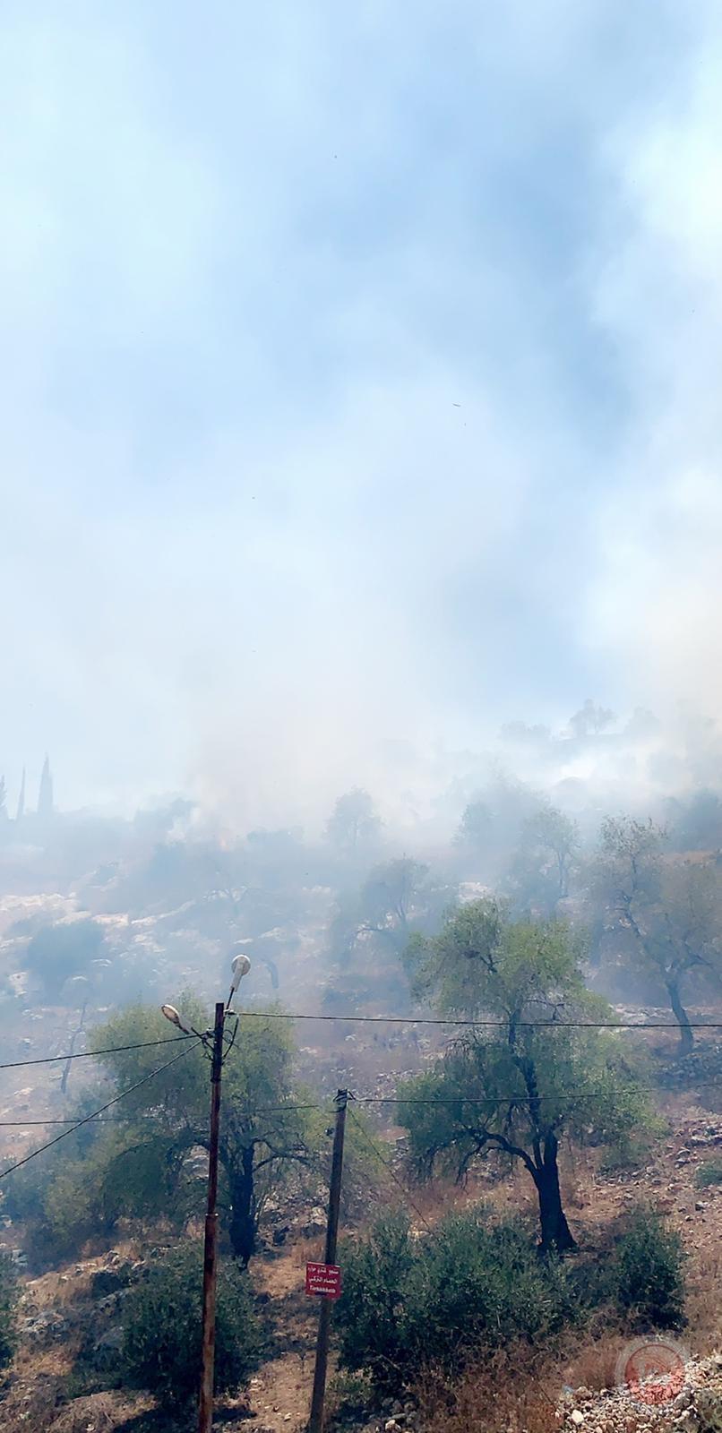 مستوطنون يضرمون النار بأراض جنوب نابلس