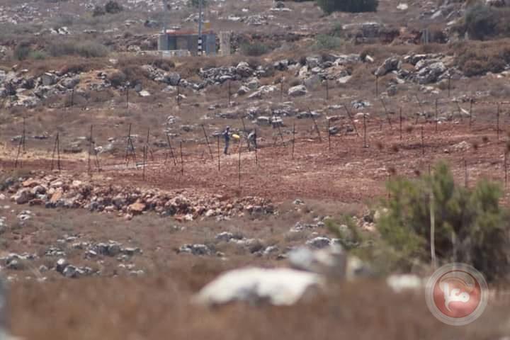 بهدف شق طريق زراعية- مستوطنون يجرفون أراض شرق نابلس