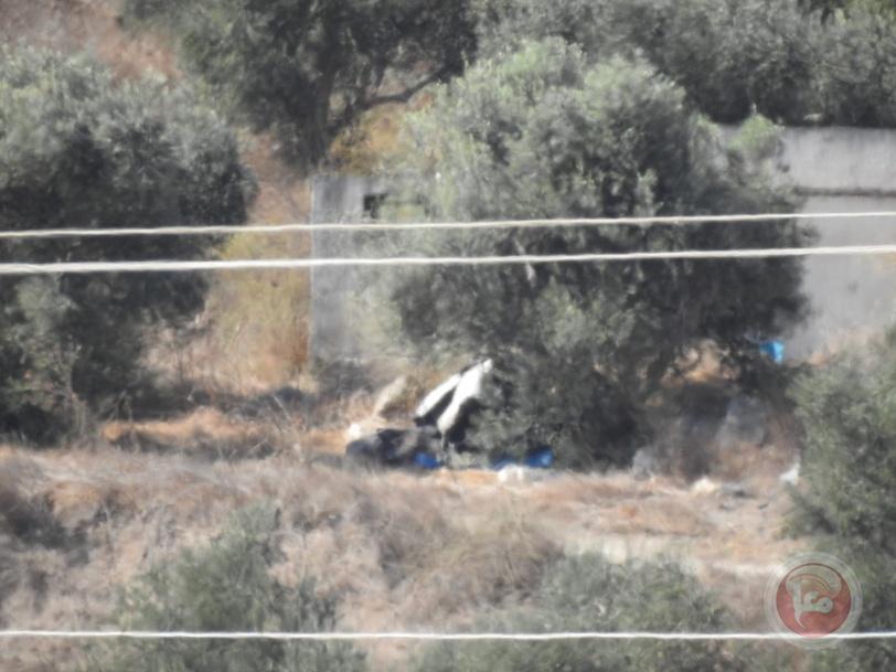 فيديو- مستوطنون يسرقون ثمار الزيتون جنوب نابلس