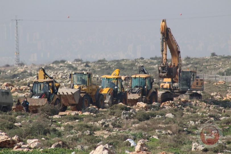 الاحتلال يقتلع 2000 شجرة زيتون للمواطنين ويعتدي مشاريع الإغاثة الزراعية في دير بلوط