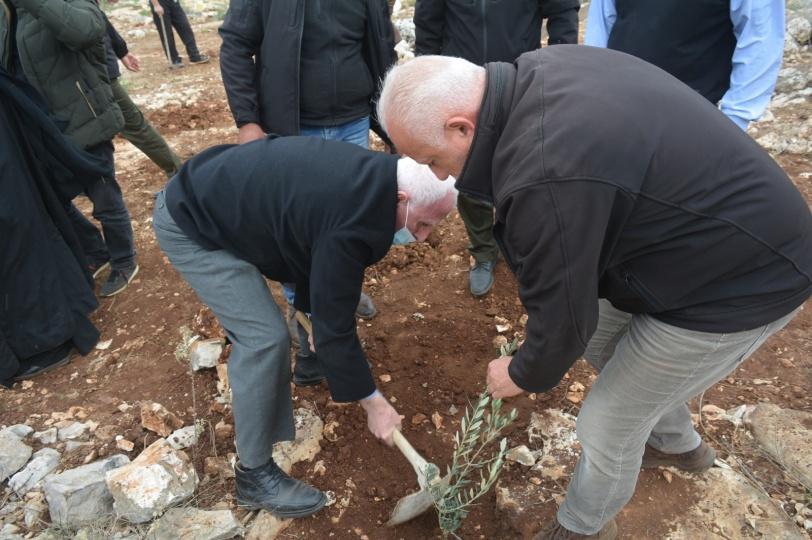 """دعماً للمزارعين: زراعة أشتال الزيتون في """"خلة العبهر"""" المُهددة بالمصادرة"""