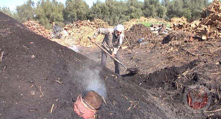 الحطاب- 45 عاما في صناعة الفحم بغزة