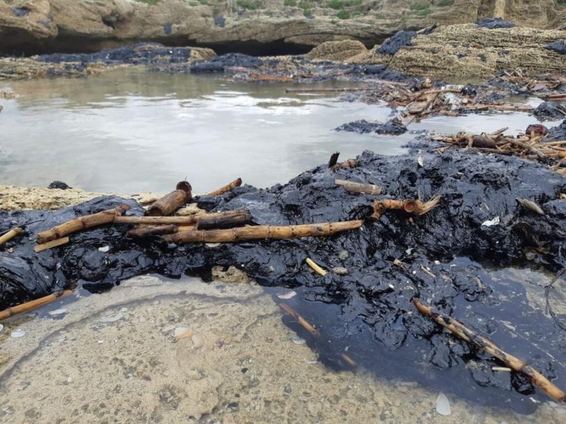 قطران مجهول المصدر يلوث 160 كم من الشواطئ بالداخل (صور)