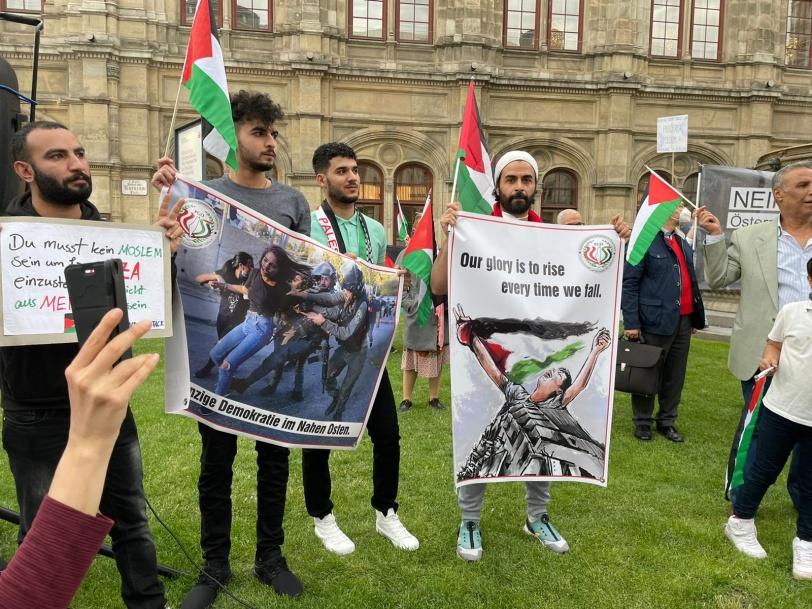 تظاهره تأييدا لفلسطين في ڤيينا