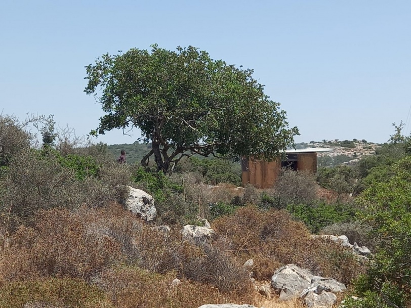 مواطنون ينظمون اعتصاماً فوق أراضيهم المهددة بالمصادرة غرب سلفيت