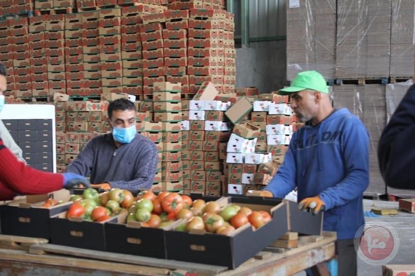 مزارعو وتجار غزة يناشدون بفتح معبر كرم أبو سالم أمام صادراتهم