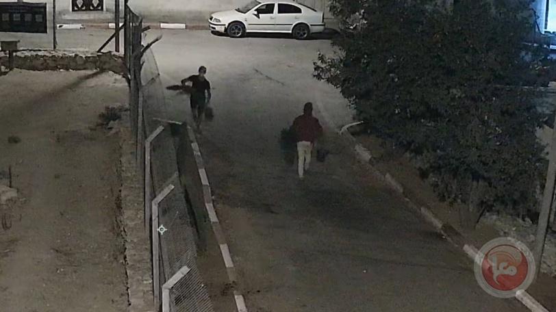مستوطنون يسرقون اشجارا من حديقة منزل في الخليل (فيديو)