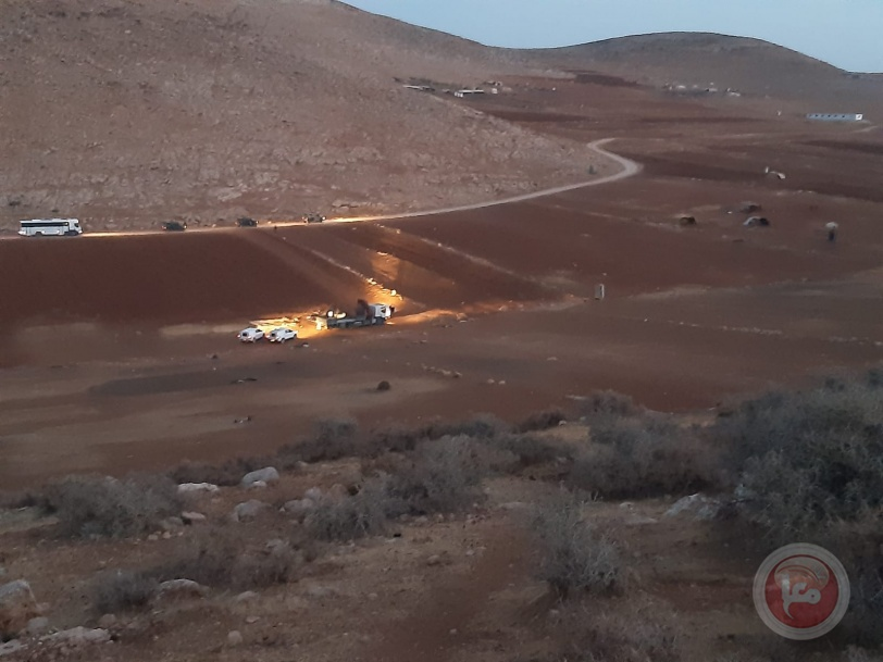 هدم ومصادرة خيام.. مستوطنون يقطعون أشجار زيتون شمال رام الله