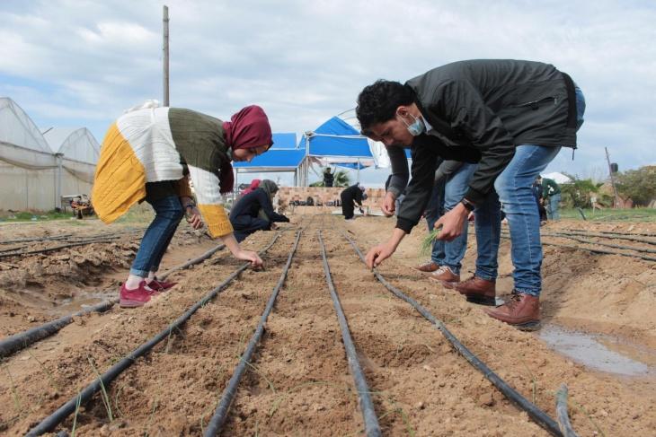 الاغاثة الزراعية تنفذ تدريبات ممنهجة للمهندسين والفنيين الزراعيين