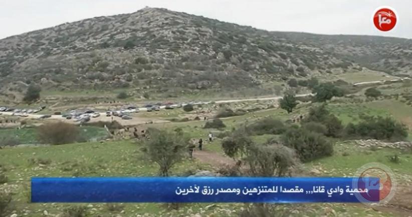 محمية وادي قانا.. مقصدا للمتنزهين ومصدر رزق لآخرين