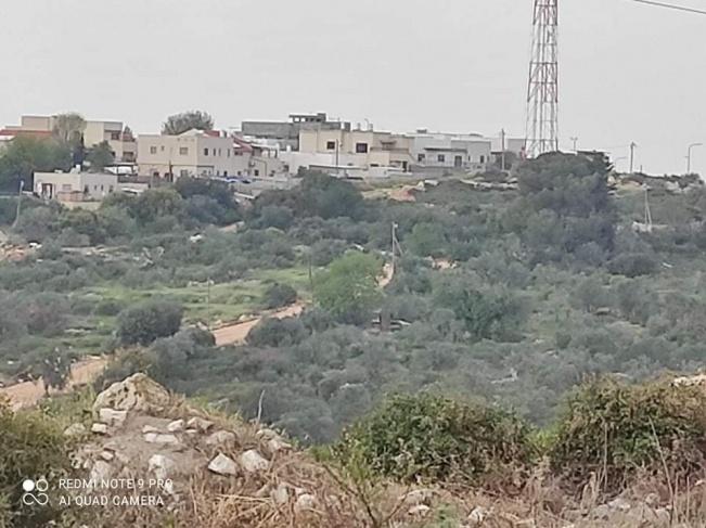 مستوطنون يكسرون أشجار زيتون ويعتدون على أراض بسلفيت