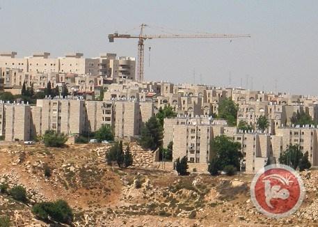 ليبرمان: إسرائيل ستدرس قطع كافة أشكال العلاقة مع مجلس حقوق الإنسان