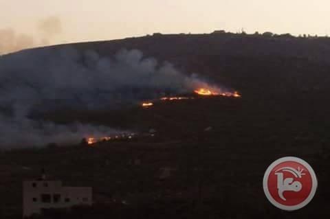 نابلس- هجمات للمستوطنين على المنازل وحرق للمزروعات